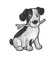 cute puppy pet sketch vector image vector image