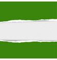 green torn paper vector image vector image