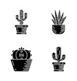 house cactus in pot glyph icons set vector image vector image