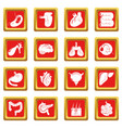 internal human organs icons set red square vector image vector image