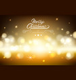 merry chistmas lettering on brown background vector image