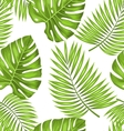 seamless wallpaper with green tropical leaves vector image vector image