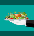 tray full vegetables in hand vector image