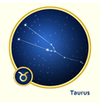 Taurus constellation vector image vector image