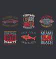 vintage design print for t-shirt stamp tee vector image vector image