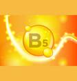 vitamin b5 gold shining pill capsule icon vector image