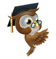 wise owl pointing sign vector image