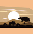 african animals silhouettes vector image vector image