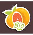 Bio orange tag vector image