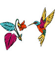 colorful hummingbird with hawaii flowers vector image