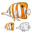 Copperband Butterfly Fish vector image vector image