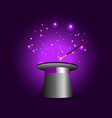 magic hat with wand on violet mysterious vector image
