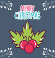 merry christmas celebration holly berry leaves vector image