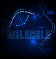 molecule background image vector image vector image