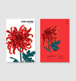 red chrysanthemum floral 2 wedding card greeting vector image