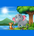 scene with elephant and monkey having fun at vector image vector image