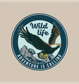 vintage badge with classic american wild eagle vector image