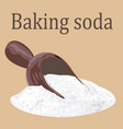 baking soda vector image vector image