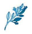 blue silhouette of branch with leaves and small vector image vector image