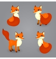 fox isolated diferent poses vector image vector image