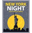 New york night vector image vector image