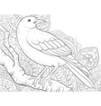 adult coloring bookpage a cute crow on the brunch vector image vector image