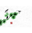 birds on green pine tree branchtraditional vector image vector image