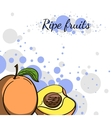 Cover Juicy Peach vector image