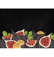 Figs fruit composition on chalkboard vector image