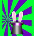 rabbit ears in magic hat green and violet sunburs vector image