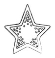 sea star symbol vector image