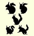squirrel animal mammal silhouette vector image vector image