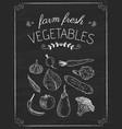 vegetables doodle on the black board vector image