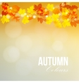 Autumn fall card banner Garden party decoration vector image vector image