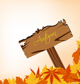 autumn leaves concept with sign post vector image vector image