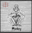 engraved of zodiac symbol with monkey vector image