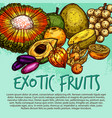 exotic fruit and tropical berry sketch poster vector image vector image