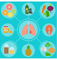 Infographics of food helpful for healthy lungs vector image