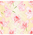 seamless texture light pink blossoms rhododendrons vector image vector image
