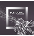 Wireframe mesh polygonal background Wave with vector image vector image