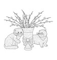 fluffy pussy willow bouquets two kittens an vector image
