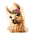 lama alpaca sticker on wall vector image vector image