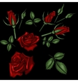 red roses embroidery vector image