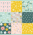 set of floral pattern spring flowers vector image