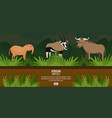 african animals concept vector image vector image