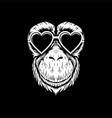 chimpanzee eyeglasses vector image vector image