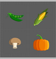 colorful vegetable icon set on grey background vector image vector image