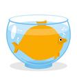 Fat fish in aquarium Fat marine animal Big vector image