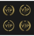 Golden VIP badges vector image vector image