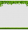 green grass and leaves border transparent vector image vector image